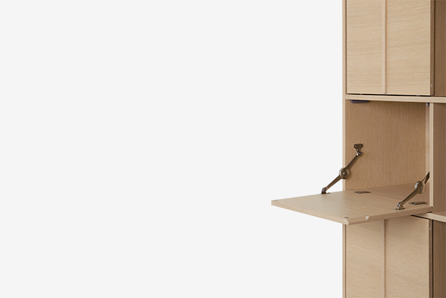 cabinet-specific-2